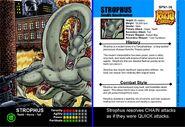 Strophus