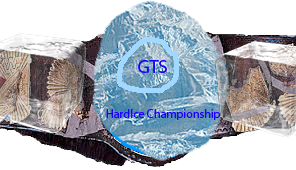 File:Hardice championship by ecwfan1-d7vdq1f.png