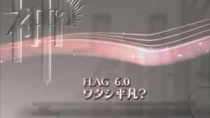 Flag 6.0