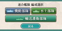 Hạm đội liên hợp