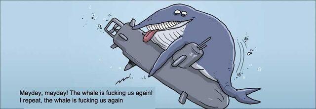 File:Whale2.jpg