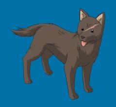 File:Stray Dog.jpg