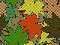 File:Leaves3.jpg