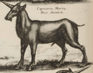John Jonston Capricornus Marinus