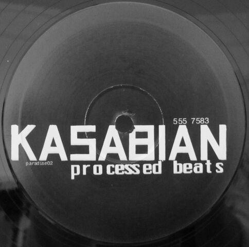 File:Processed Beats 10 Promo Vinyl (PARADISE02) - 3.jpg