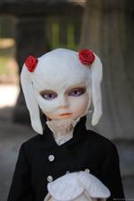 Goodreau Tea Party dolls (14)