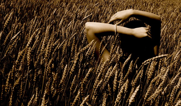 File:Shoulder wheat.jpg