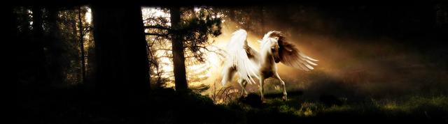 File:Pegasuss.png