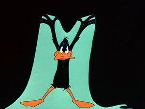 DaffyDuck