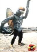 File:Green Mantis2.jpg