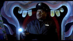 Amusement Park Security Guard