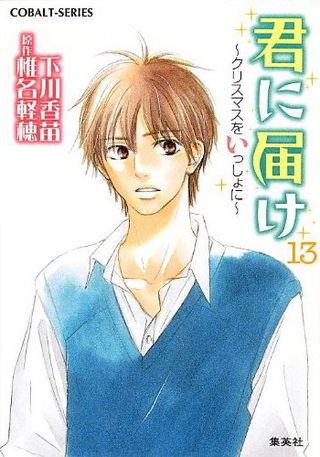 Kimi ni Todoke Light Novel v13 cover