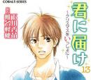 Kimi ni Todoke Light Novel Volume 13
