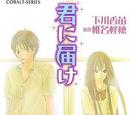 Kimi ni Todoke Light Novel Volume 01