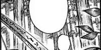 Kokushi