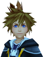Sora's Crown (Copper)