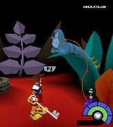 Wonderland1