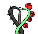Dreamer's Rose