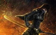 Warrior-ninja