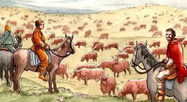 Cattle Herd Clan