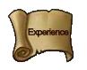 File:Exp big icon.jpg