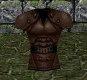 Leatherbreastplate