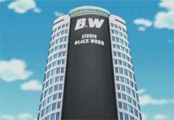Studio Black Wood Building