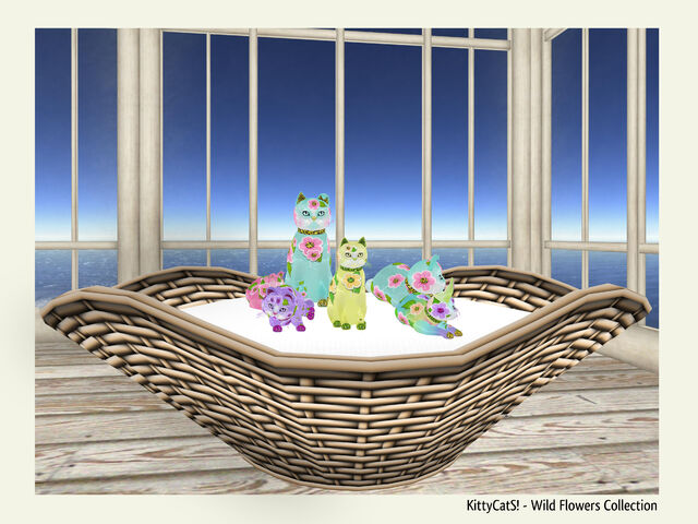 File:KittyCatS! - Wild Flower Collection.jpg