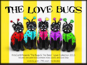 KittyCatS! - The Bugs & BeeS! - Love Bugs