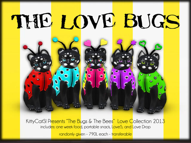 File:KittyCatS! - The Bugs & BeeS! - Love Bugs.jpg