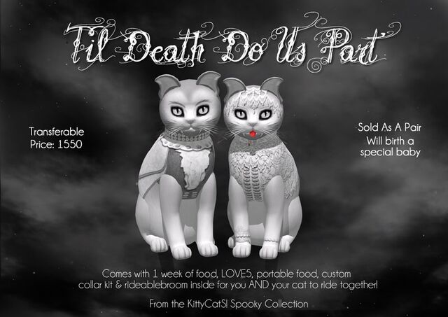 File:Kittycats-til-death-do-us-part ad.jpg