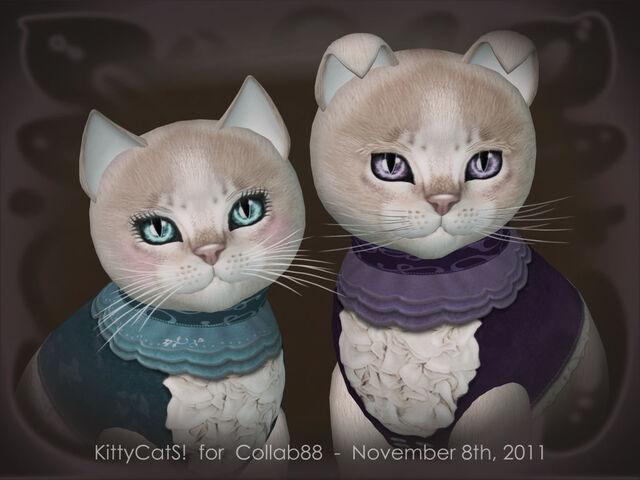 File:Collabacats KittyCatS & Collab88 - twoNovember 20-11.jpg