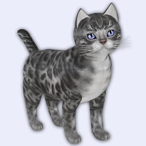 File:Bengal Silver - Gerbera Blue Eyes - Porcelain Shade.jpg