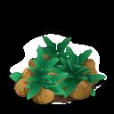 File:Potato last.png