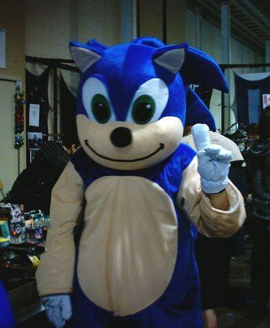 File:Soinc hegehog.jpg