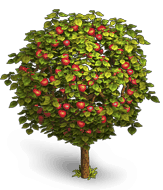 image apple treepng klondike the lost expedition