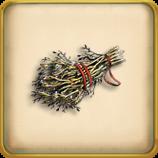 Dry twigs framed