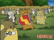 Hamsters f