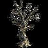 Res burnt tree 3