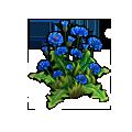 Resource-Cornflowers