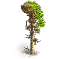 Res burnt tree 2.png