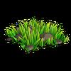 Bunch of grass