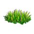 Res grass 3