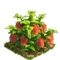 Pepper plant ph4