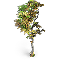 Res burnt tree 1.png