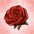 Rose of Charisma-icon