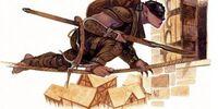 Thief-Acrobat