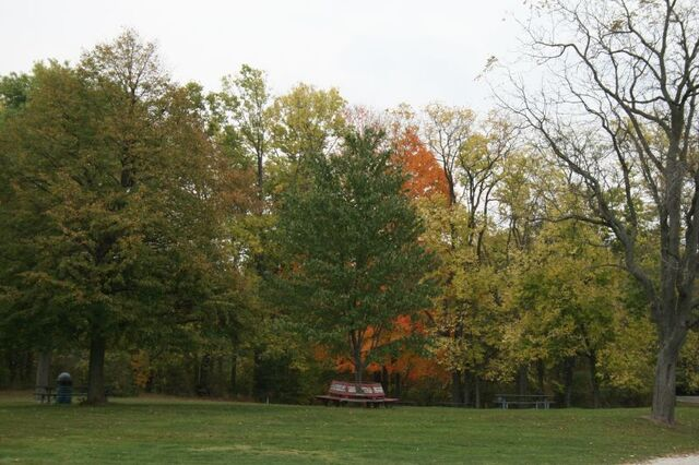 File:Eagle Creek Park in the Fall.jpg