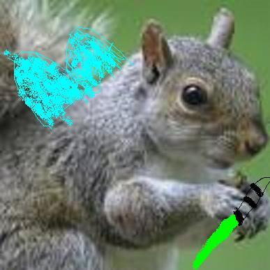 File:Fairy Jedi Squirel.jpg