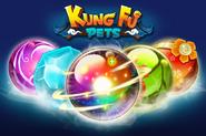 Kungfuballs2